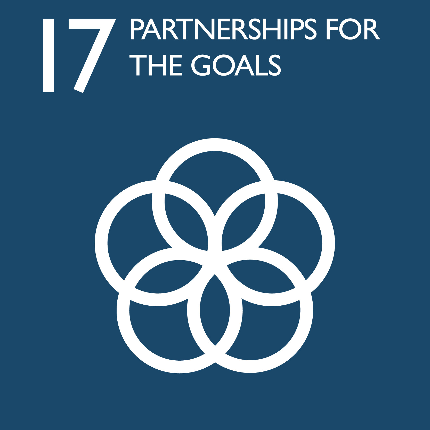 The Common Purpose - Global Goals 17